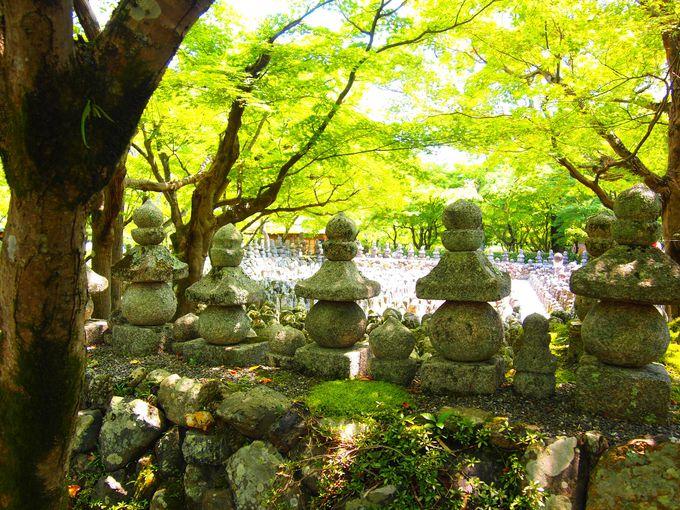 「あだしの念仏寺」で夏の情緒を味わう