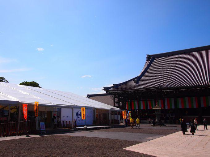 国宝・御影堂と「おてらかふぇ&まるしぇ AKARI」