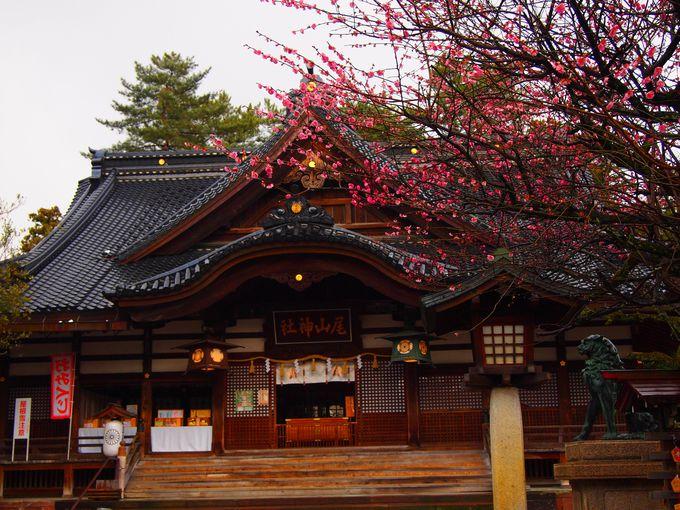 尾山神社・拝殿