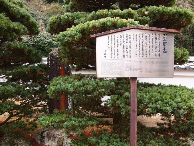 粟田口周辺
