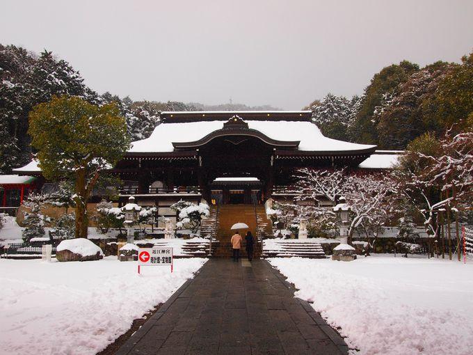 近江神宮・拝殿