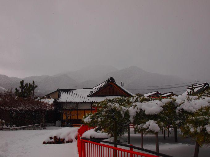 琵琶湖と比叡山〜唐崎神社からの眺め