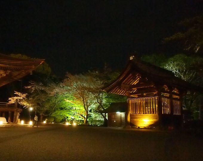三井寺の玄関