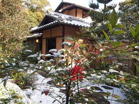 冬に訪れたい京都の観光スポット10選 雪・梅・ライトアップが美しい