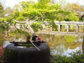 庭園と建物の見学がたったの100円!京都御苑「拾翠亭」
