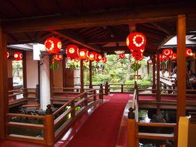 「上七軒ビアガーデン」で舞妓さんと京都伝統のおもてなし