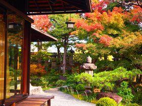 植治の絶景庭苑を眺めてお食事!京都「がんこ高瀬川二条苑」