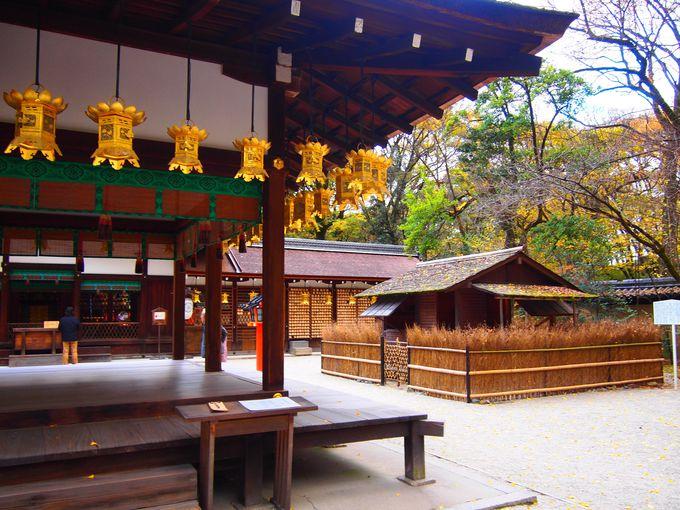 秋の河合神社