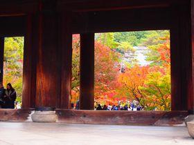 京都の紅葉を南禅寺で 絵画のような三門&水路閣の柱越しに見る風景