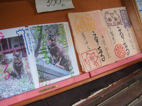 にゃんこの御朱印も!京都西山「十輪寺」見所と美しい御朱印