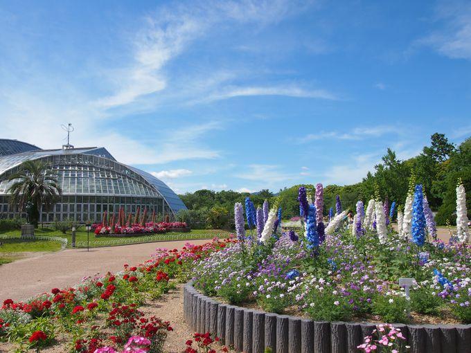 歴史ある総合植物園