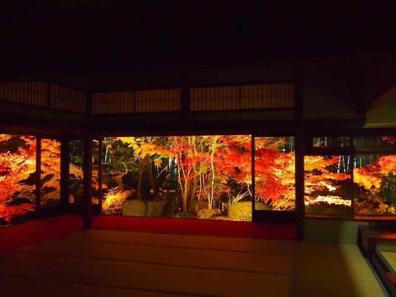 京都・南禅寺「天授庵」で幻想的なライトアップ庭園の鑑賞を