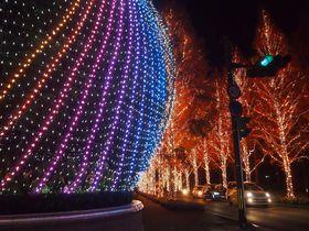 古都・京都のクリスマス!「ロームイルミネーション」