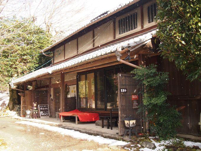 京都・八瀬「猫猫寺」