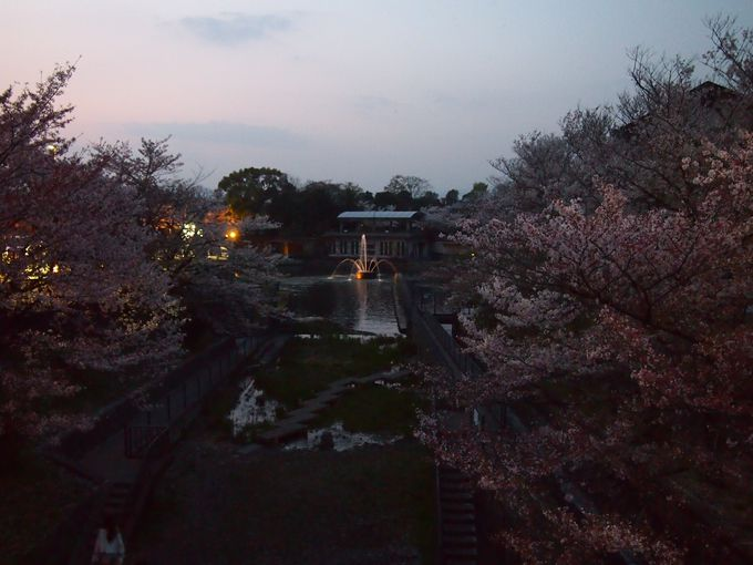 琵琶湖疏水の噴水
