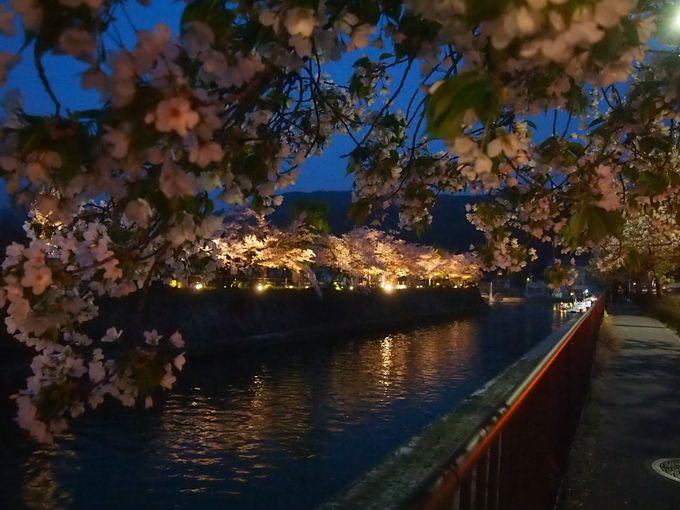 岡崎公園東部の光景