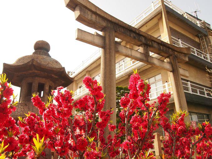 六孫王神社の玄関口