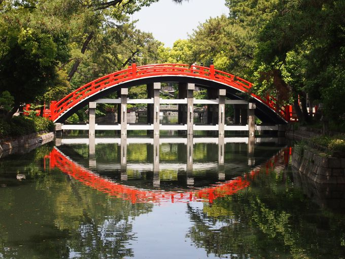 反橋とサツキ