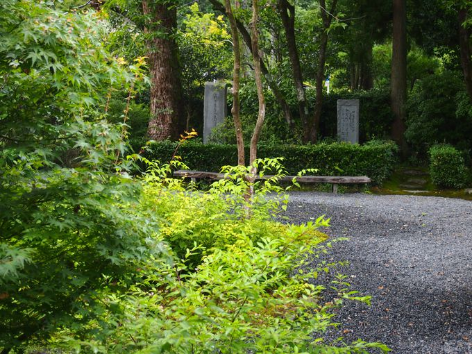 句碑や嵐山の眺望も!庭の見所