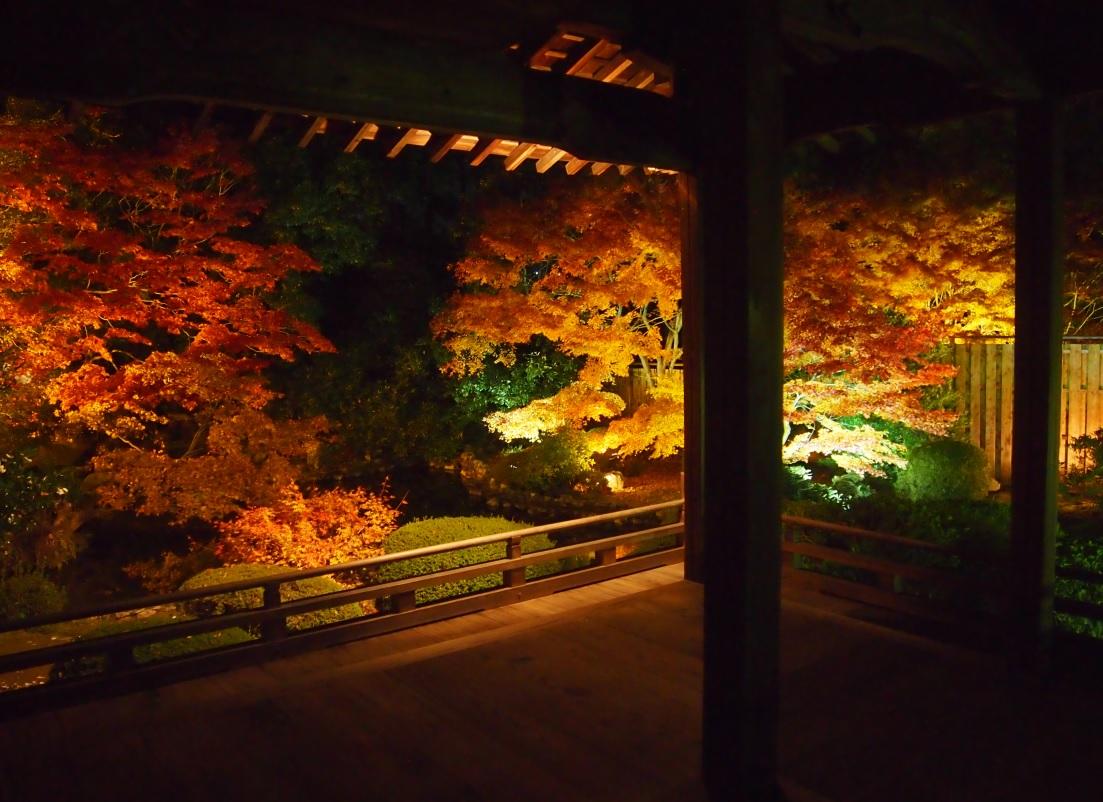 色鮮やかな隨心院の庭園