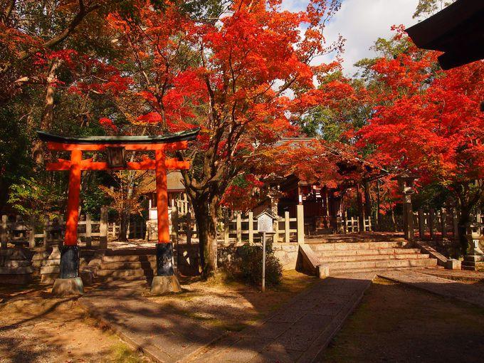 天満宮の紅葉も美しい