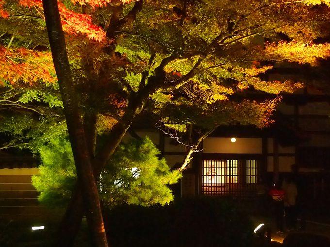高台寺へのアプローチ