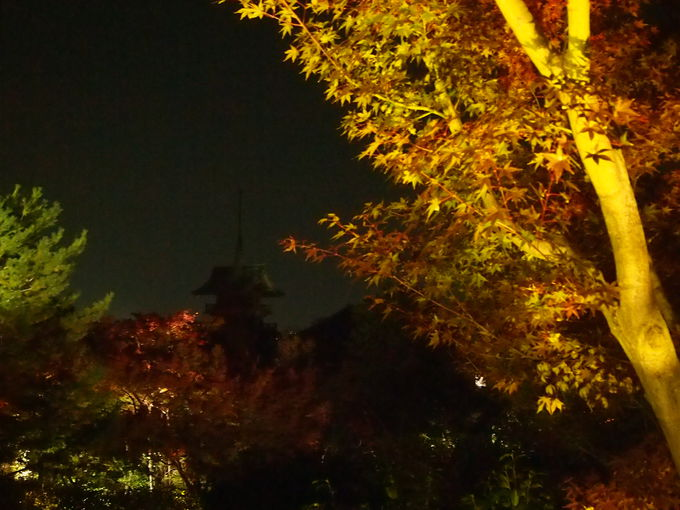 祇園閣と遺芳庵
