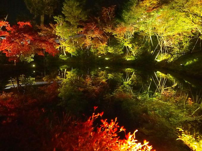 秋の開山堂周辺の光景