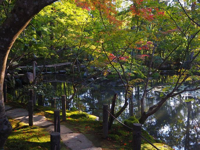 池泉回遊式庭園「書院南庭」へ