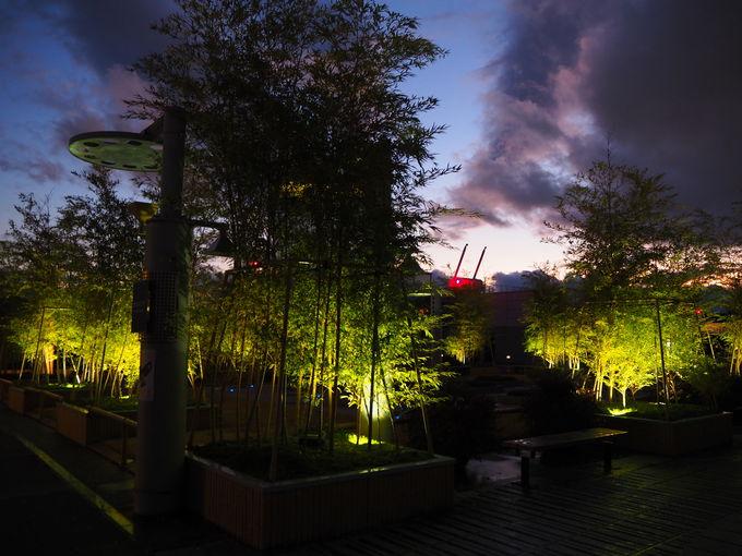 夕焼けもおすすめ「大空広場」