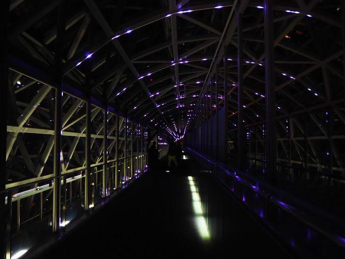 神秘的!空中径路「STAR BRIDGE」