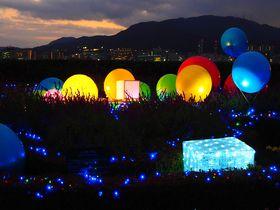 光のおもちゃと琵琶湖の夜景!「びわ湖大津館 イングリッシュガーデン」