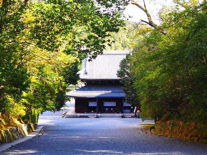 壮麗な堂宇が連なる「泉涌寺」
