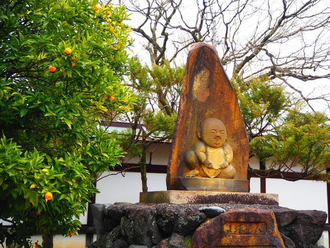 人形の寺として知られる「宝鏡寺」