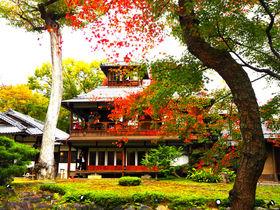 秋の特別公開も!京都「旧三井家下鴨別邸」で名建築と紅葉を堪能