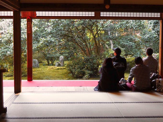 座して見る!方丈「十六羅漢の庭」