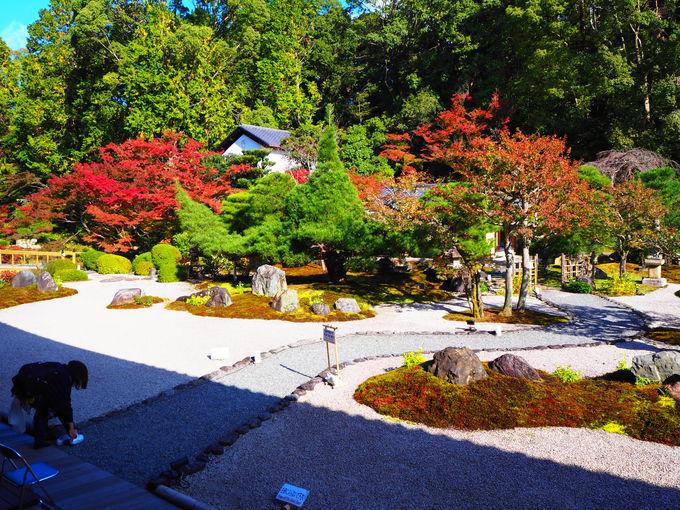 秋の庭園紅葉は必見!