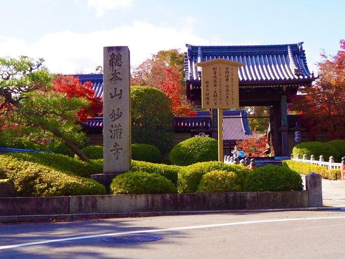 洛北の名刹「妙満寺」