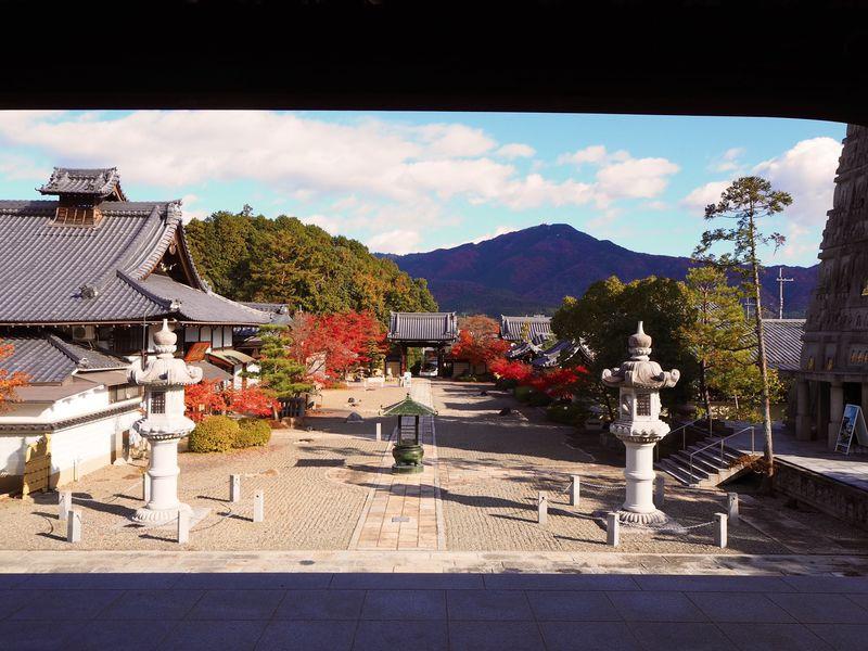 雪の庭で名高い京都・洛北「妙満寺」は秋の紅葉も美しい!