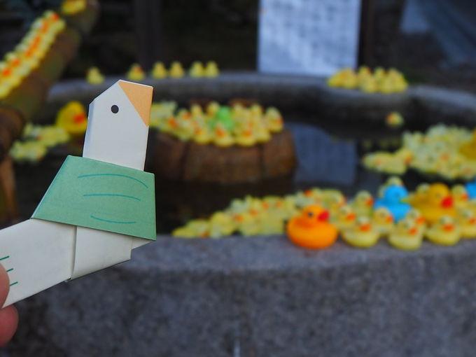 期間限定のお楽しみ!?粟田神社の「手水」
