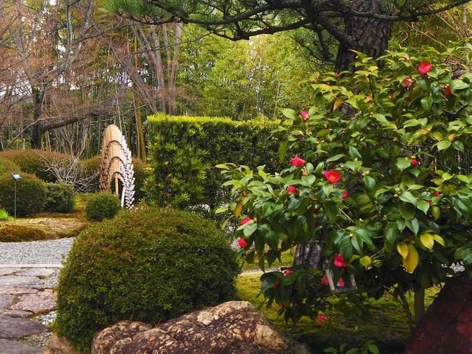 表情豊かな庭園の見所