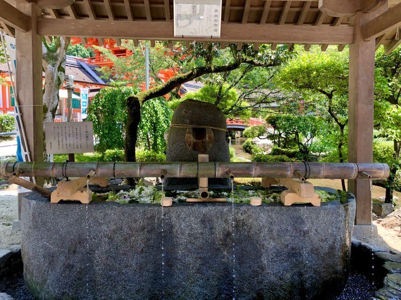 花手水や笹飾りも!京都「上賀茂神社」夏の緑と水辺の涼景