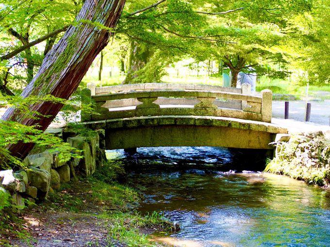 水と橋の織り成す光景