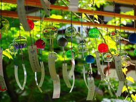 目でも耳でも味わえる涼景色!夏の京都「松尾大社」