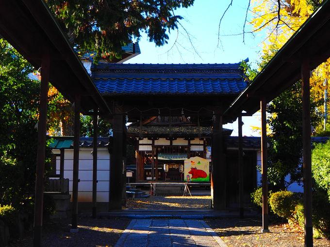 湖国の神様を祀る「和田神社」