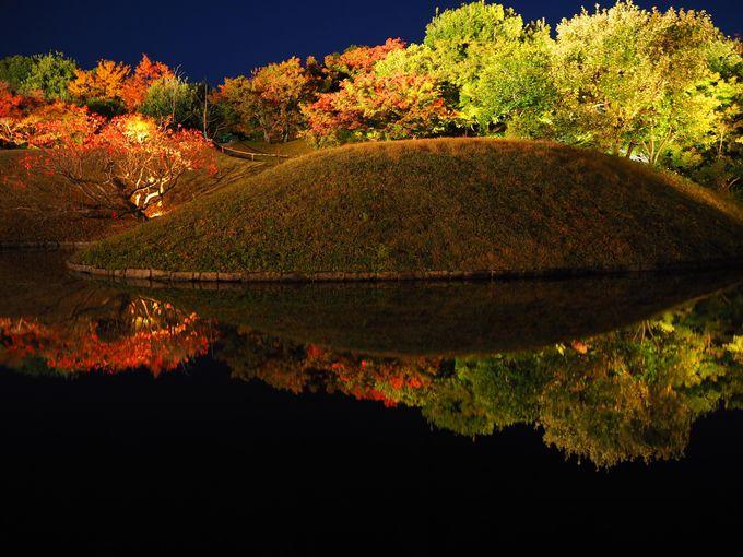 水面に映る紅葉は絶景!