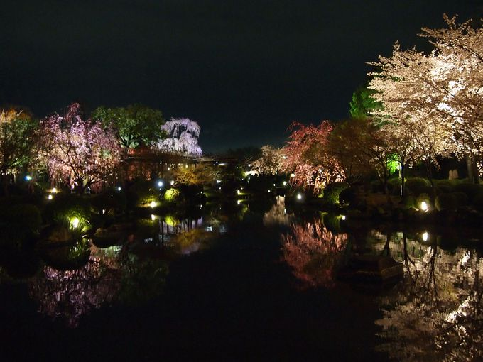 夜のお庭は幻想的!