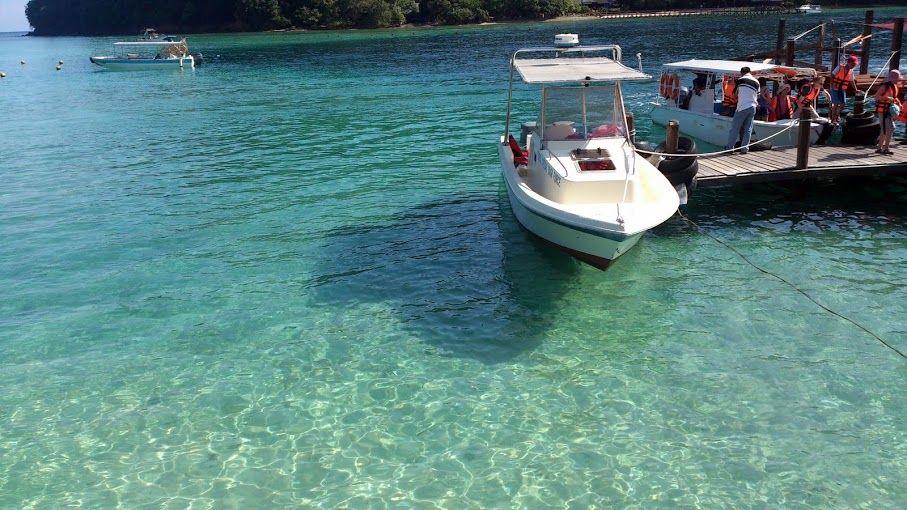 (2)ビーチにジャングルに、南の島の豊かな自然!