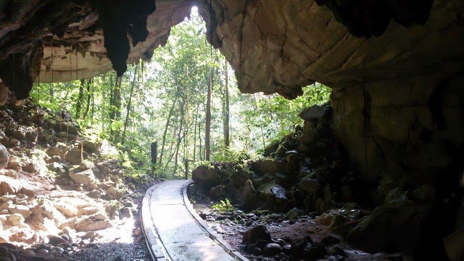 (5)世界遺産グヌン・ムルで大自然を満喫