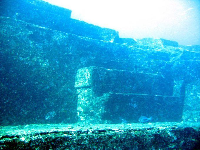 アトランティスの遺跡と言われた『海底遺跡』にダイビング